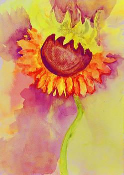 Sunflower by Moya Moon