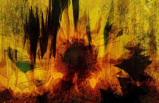 Nigel Watts - Sunflower