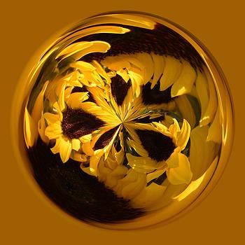 Paulette Thomas - Sunflower Orb