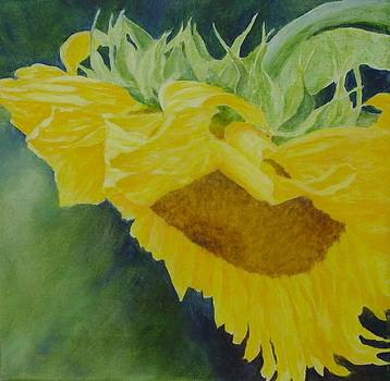 Sunflower Original Oil Painting Colorful Bright Sunflowers Art Floral Artist K. Joann Russell  by Elizabeth Sawyer
