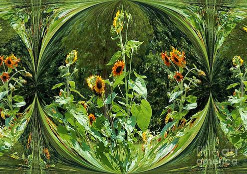 Sunflower Reflective by Annette Allman