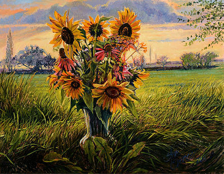 Sunflower Sunset by Steve Spencer
