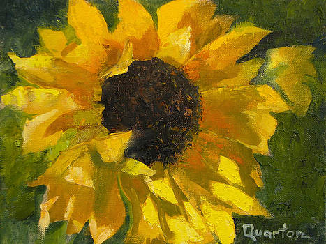 Sunflower Surprise by Lori Quarton