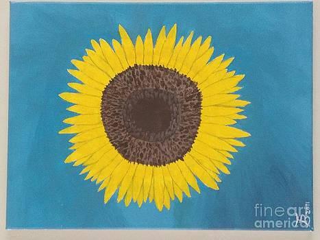 Sunflower by Tim Blankenship