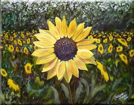 Sunflower by Wagner Chaves
