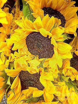 Nancy Stein - Sunflower Yellow