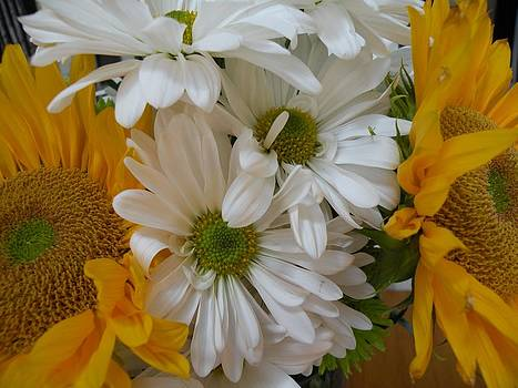 Sunflowers and Daisies by Saundra Lane Galloway