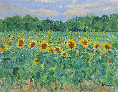 Sunflowers by Carol Gray