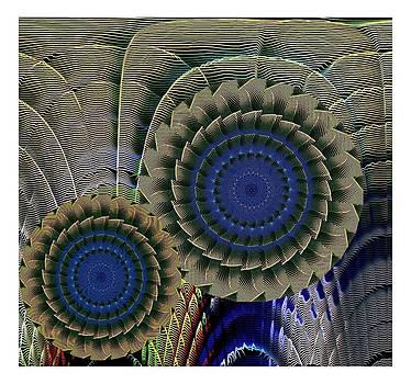 Sunflowers by Ck Gandhi