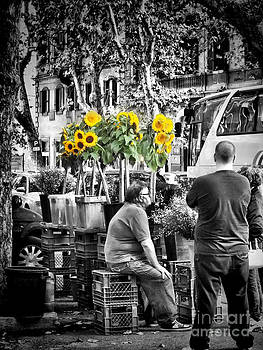 Sunflowers for Sale by Karen Lindale