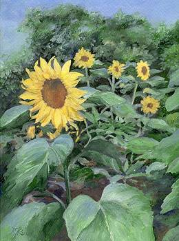 Sunflowers Garden Floral Art Colorful Original Painting by Elizabeth Sawyer