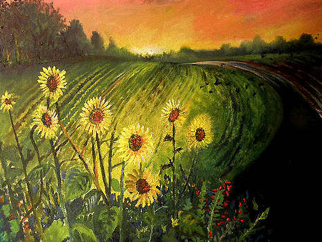 Sunflowers in Sunset by Steven Linebaugh