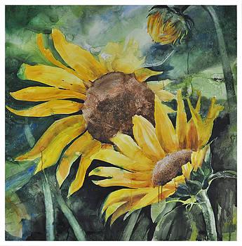 Sunflowers by Santanu Maity