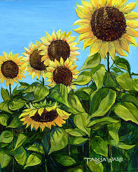 Sunflowers by Tanja Ware