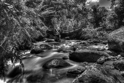 Sungai Chiling River by Mario Legaspi