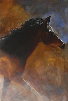 Sunhorse by Jack Atkins