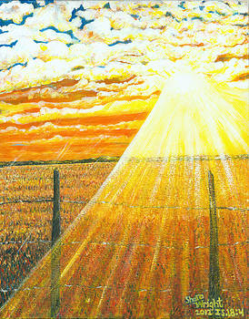 Sunlight and Wheat by Shara  Wright