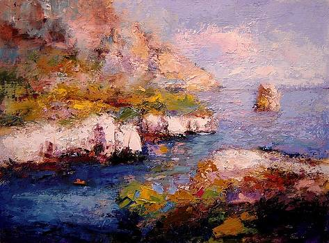 Sunlight on Les Calanques by R W Goetting