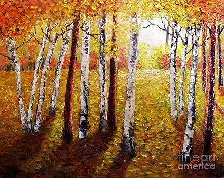 Peggy Miller - Sunlight through the trees