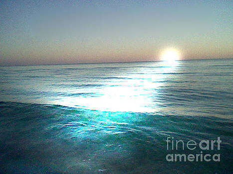 Sunlit Waves by Leslie Fagan