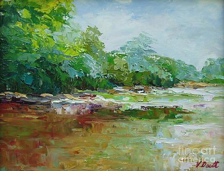 Sunny Catawba River by Virginia Dauth
