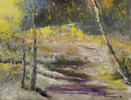 Sunny Creek by Ann Arensmeyer