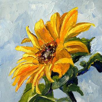 Sunny D - a Sunflower by Saundra Lane Galloway