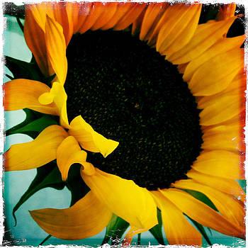 Sunny Dayz by Dorian Hill
