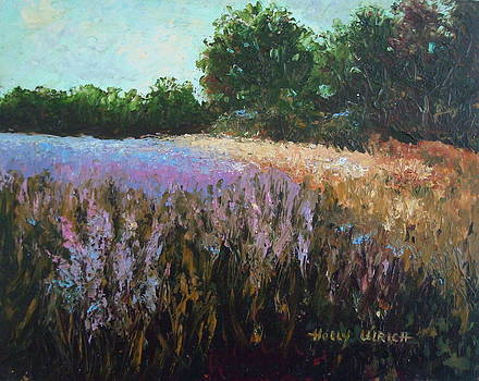 Sunny Field of Wild Flowers by Holly LaDue Ulrich