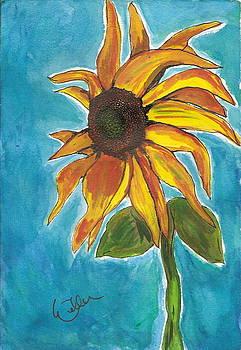 Marcia Weller-Wenbert - Sunny Flowers