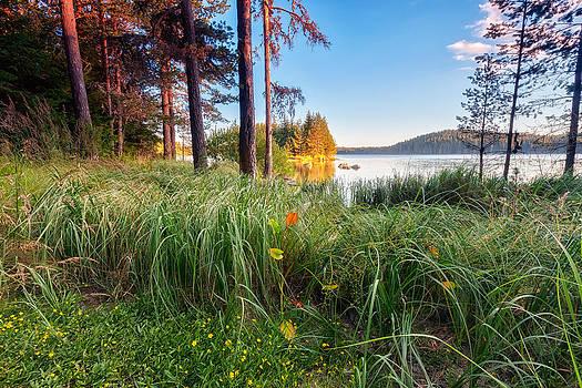 Sunny Lake by Evgeni Dinev