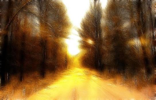 Steve K - Sunny Road