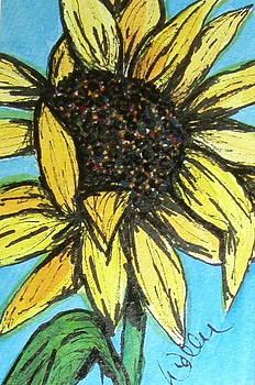 Marcia Weller-Wenbert - Sunny Seeds