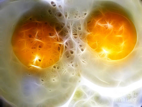 Wingsdomain Art and Photography - Sunny Side Up