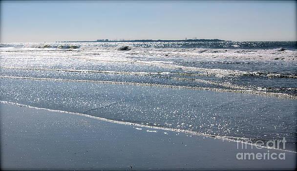 Danielle Groenen - Sunny Winter Beach