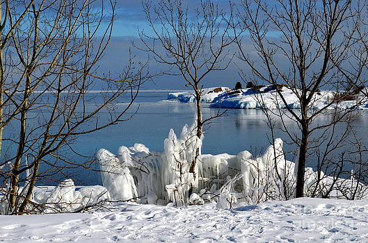 Crisp Winter Day by Jaunine Roberts