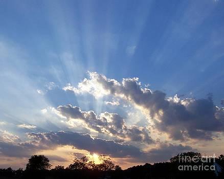 Sunrays over the farm by Bren Thompson