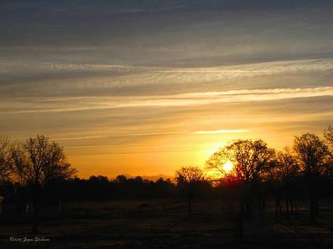 Joyce Dickens - Sunrise 03 13 13