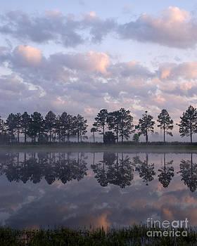 Lauren Brice - Sunrise Across the Pond