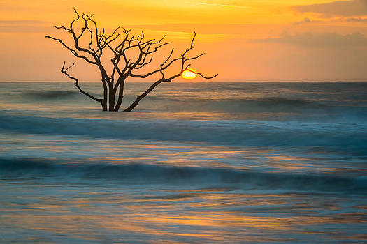Sunrise at Botany Bay by Mike  Walker