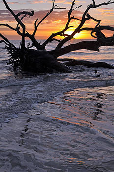 Sunrise at Driftwood Beach 6.3 by Bruce Gourley
