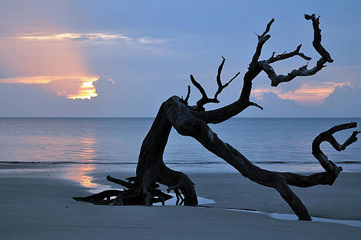 Sunrise at Driftwood Beach 7.1 by Bruce Gourley