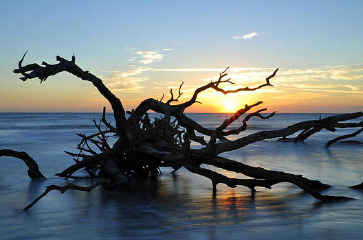 Sunrise at Driftwood Beach 7.4 by Bruce Gourley