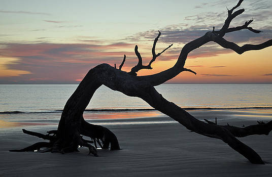 Sunrise at Driftwood Beach 7.6 by Bruce Gourley