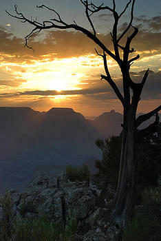 Sunrise at Mather Point by David W Schafer