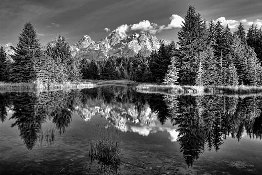 Sunrise At Schwabacher Landing by Summer Kozisek