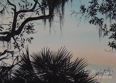 Sunrise at Shellmans Bluff by Sandy Brindle