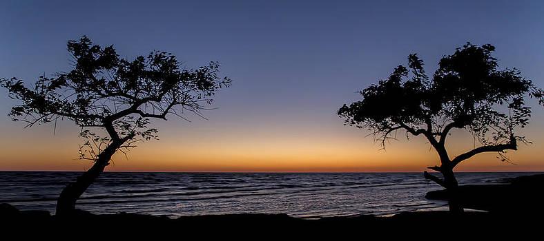 Sunrise Between two trees by Alfredo Rougouski