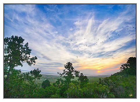Sunrise Breakfast Flight by Gordon Fritz