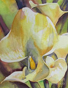 Sunrise Callas by Beth Fischer